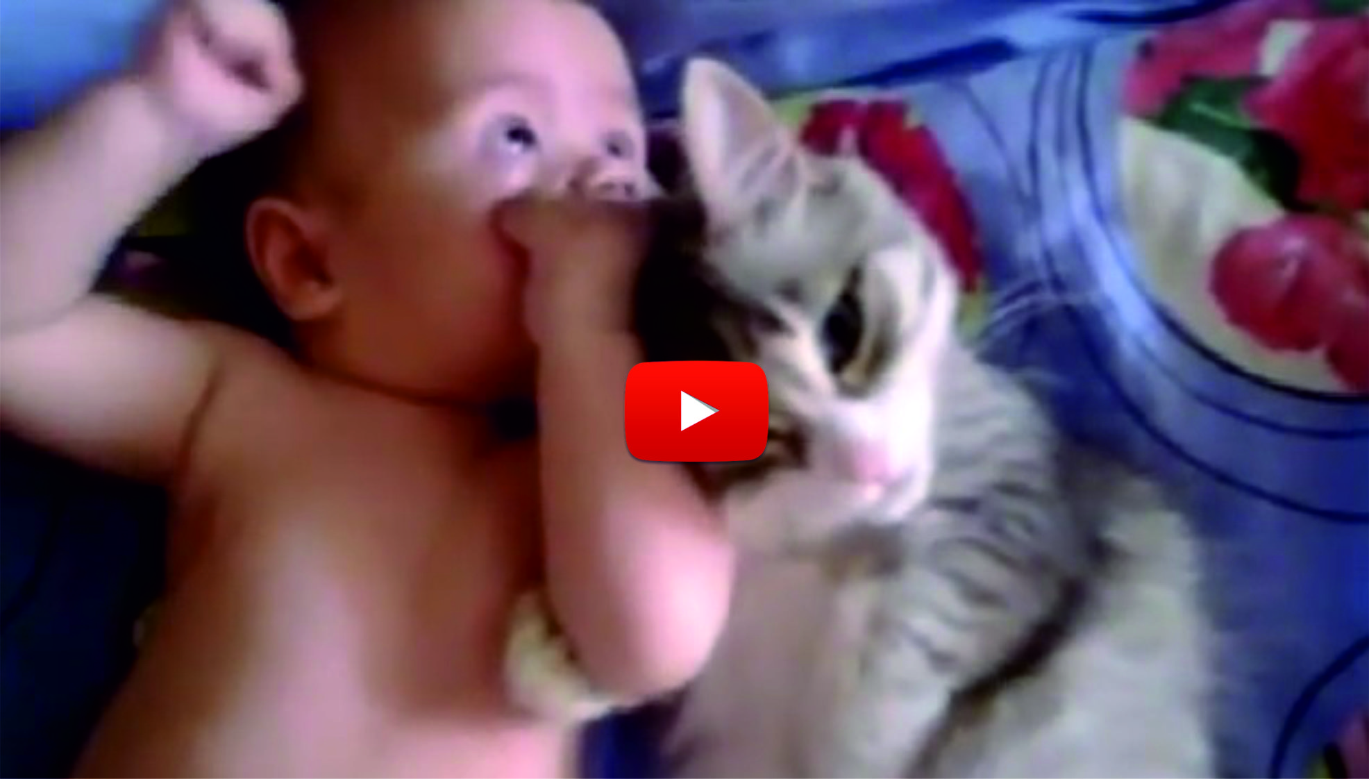 БЕЗУМНО сладко коте и бебе! Погледнете ги само – това се казва любов и нежност! (ВИДЕО)