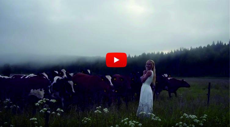УНИКАЛНО! Как жена с хипнотизиращ глас и НЕВЕРОЯТНА песен успя да извика и събере кравите от планината! (ВИДЕО)