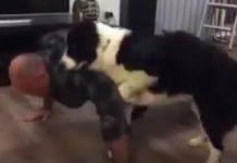 кучето му