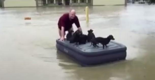 Достойно за уважение! Този всеотдаен мъж спаси кученца при наводнение в САЩ. Как да не го аплодираме! (ВИДЕО)