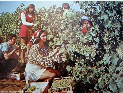 Носталгия: А бяха времена, в които се гордеехме с БГ виното