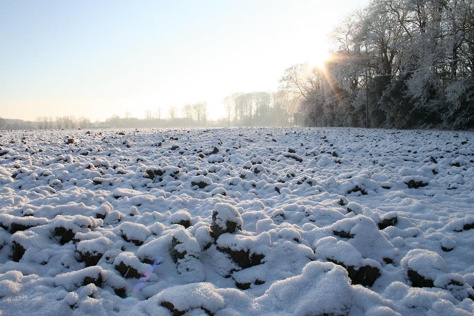 След циганското лято става страшно! Синоптици предвидиха люта и много студена зима в цяла Европа