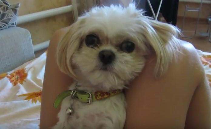 Стопанката съобщава на кучето си, че му е изяла храната. Ще се забавлявяте много, когато видите как посрещна новината (ВИДЕО)