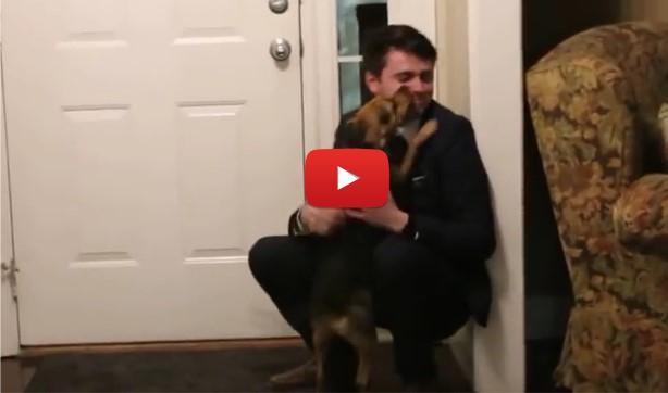 Този човек не се е прибирал зели ДВЕ ГОДИНИ вкъщи! А ето как реагира кучето му, когато го видя! (ВИДЕО)