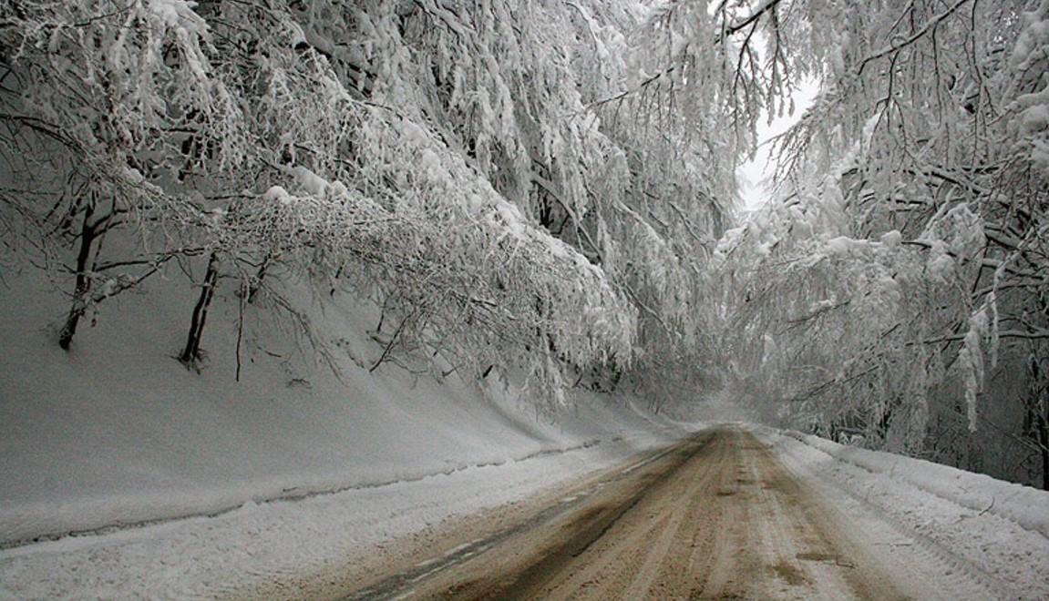 Честит първи сняг, българи! Снежна пелена затрупа България! Пазете се