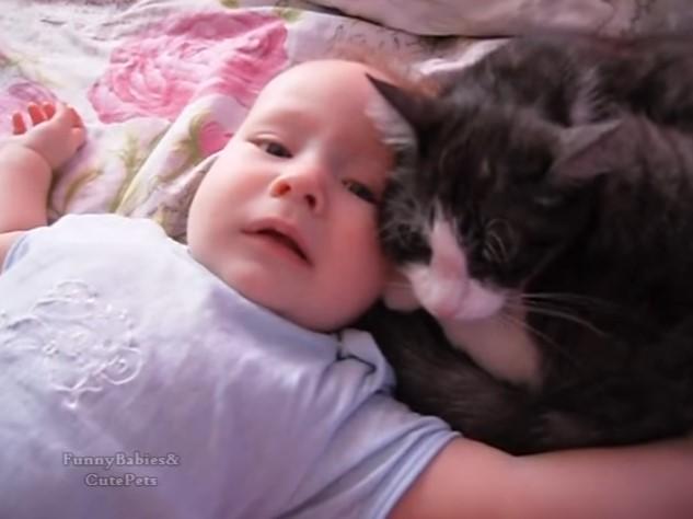 Умилително! Вижте какво прави тази котка за бебето (ВИДЕО)
