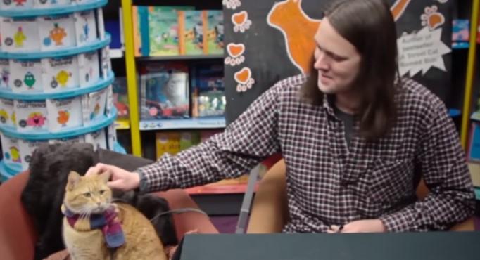 Едно котенце се доближи до чаровен уличен музикант. Но ето как се промени техният живот впоследствие (ВИДЕО)