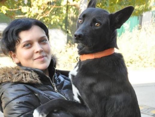 Удивителна история! Това куче извървя цели 300 километра. Ще се изумите, когато разберете защо