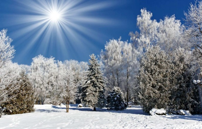До -15 градуса ни очакват през декември. ПРОГНОЗАТА ЗА БЪДНИ ВЕЧЕР И КОЛЕДА ВЕЩАЕ…