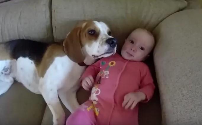 Въпреки че родителите ги оставиха самички, бебето и кучето определено не скучаеха заедно (ВИДЕО)