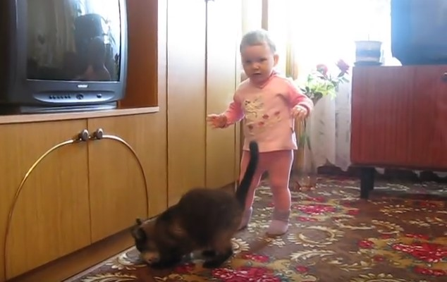 Когато това малко дете грабна малкото котенце, никой не предполагаше как ще реагира майката-котка (ВИДЕО)