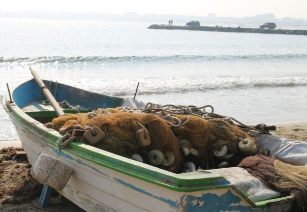 Народът пощуря по нов бизнес! Рибари изкарват над 1000 лева на ден, зарязват паламуда