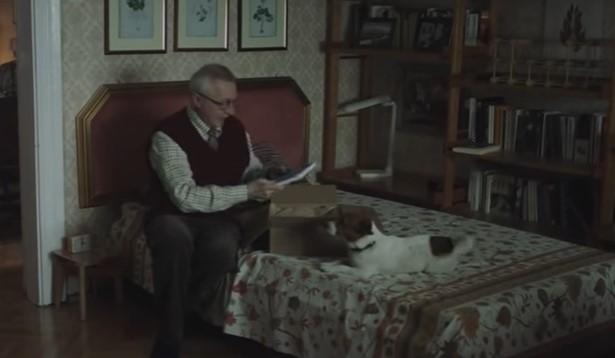 Коледна приказка трогна до сълзи милиони. Вижте човешката история на този дядо (ВИДЕО)