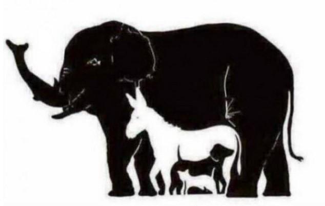 Я да проверим дали сте наблюдателни? Колко точно са животните на снимката?