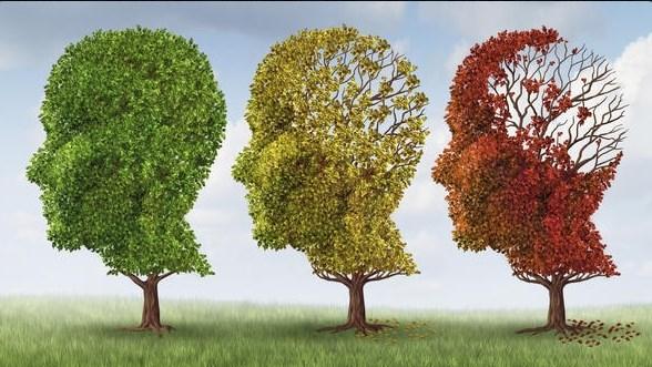 Еврика! Алцхаймер и деменция ще останат само в учебниците, ето какво преобърща историята
