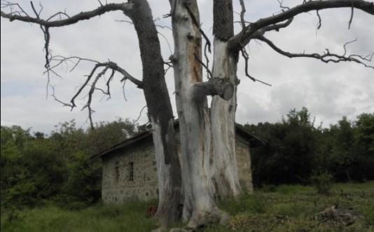 Чудо в древен български манастир! Духовете на съсечени от турците монаси се явяват на светото място (ВИДЕО)