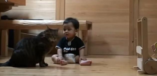 Вижте как котката учи бебето да ходи! Невероятно ВИДЕО