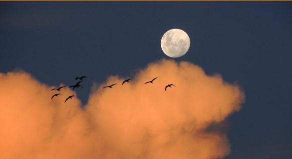 Благословена Луна изгря днес! Ето как ще ни се отрази това!