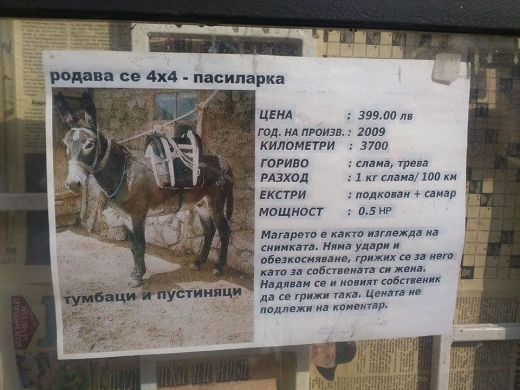 Тази обява за продажба на магаре взриви социалните мрежи. И има защо! (СНИМКА)