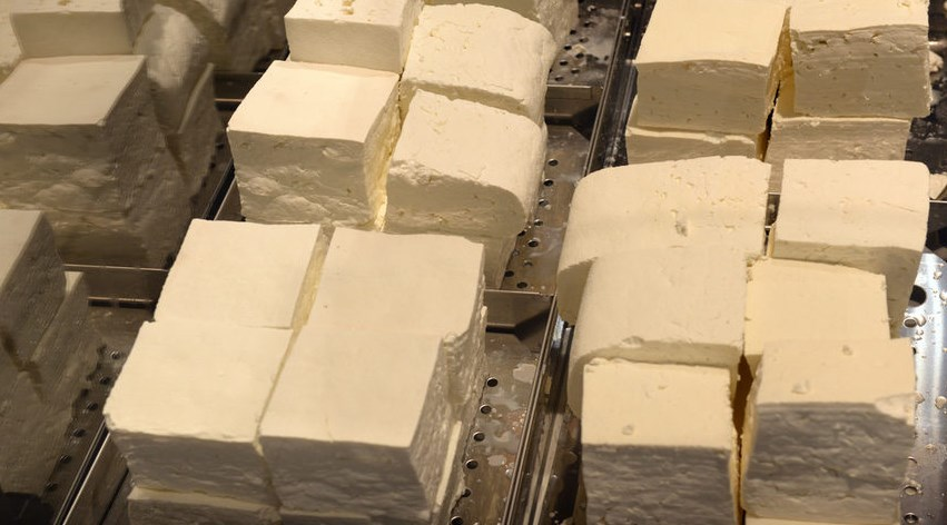 срок на годност на сиренето