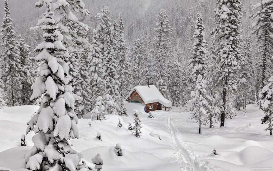 Най-добрите синоптични агенции в света прогнозираха за България исторически аномалии през зимата!
