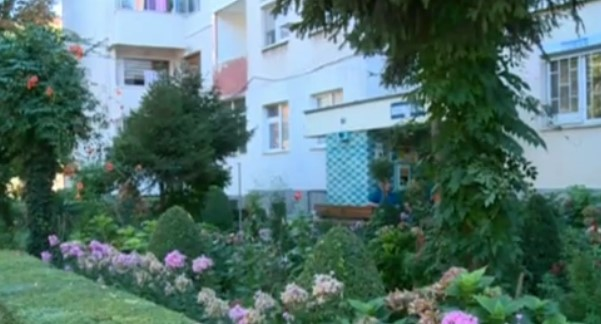 Делото на този 85-годишен мъж усмихна Пловдив! Ето как разнообрази ежедневието той (СНИМКИ)