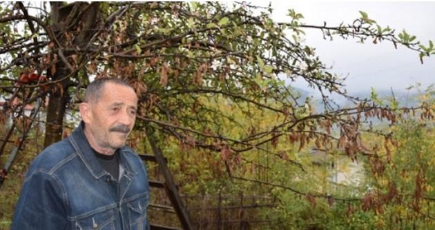 """Знамение в кв. """"Ефендилер"""" в Ардино показа каква зима ни чака и ще се сбъдне ли прогнозата на доц. Рачев (СНИМКИ)"""