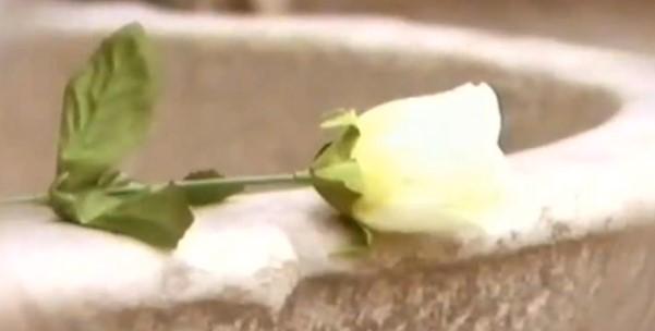 """Всеки знае """"Бяла роза""""! Нека отново се насладим на прекрасната българска народна песен (ВИДЕО)"""