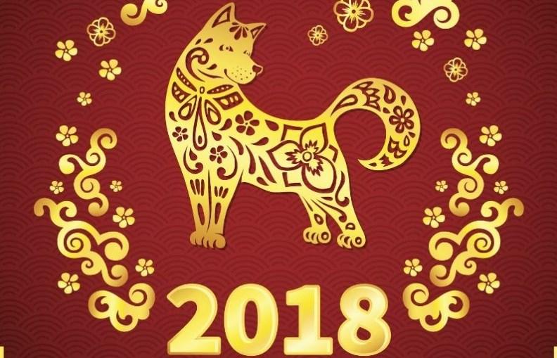 Идва годината на Жълтото земно куче. Задължително изхвърлете тези предмети от дома си, за да имате късмет и благоденствие