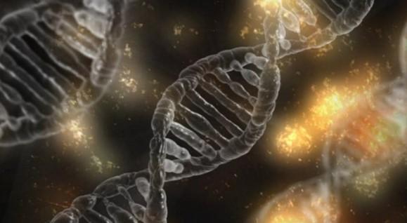 Шапки долу: Български учени направиха пробив в борбата с рака. Млад екип от БАН прояви смайваща находчивост