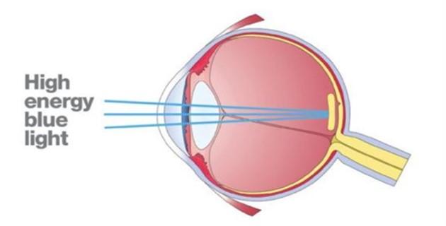 Лутеинът и неговото значение за здравето на очите
