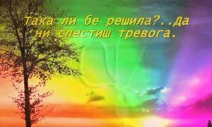 Плач по мама: Тези прекрасни стихове на Недялко Йорданов развълнуваха до дъно социалните мрежи