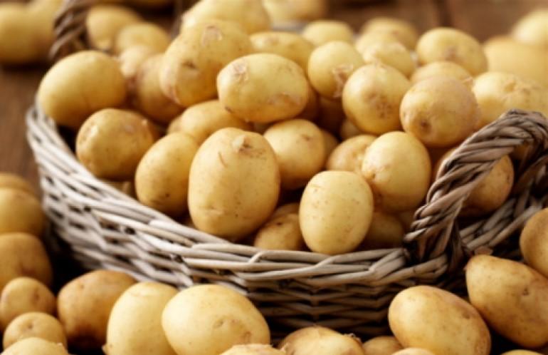 Учени установиха скандална истина за картофите, които всички ядем: Вредни ли са за здравето?
