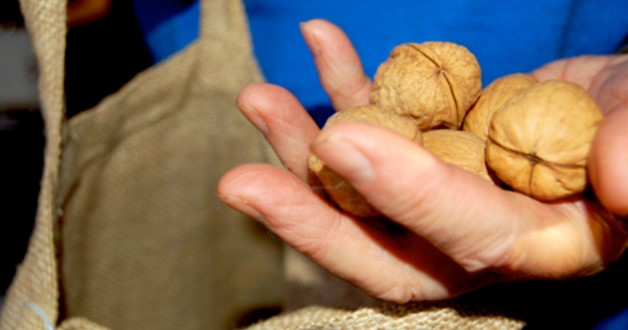 92-годишният Дядо Стефан цял живот носи орех в джоба си! Ето как се преобърна съдбата му