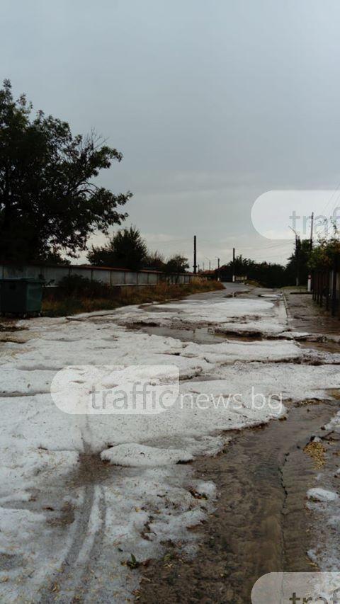 Село край Пловдив побеля: Градушка колкото орех унищожи реколтата и хвърли хората в отчаяние(СНИМКИ и ВИДЕО)