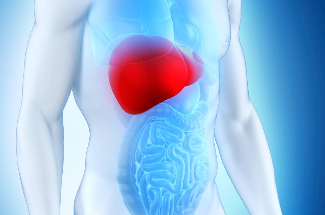 Как да спасим черния си дроб?
