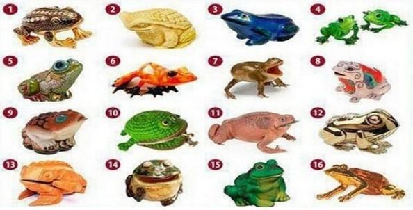 Приятен и много точен тест: Открийте своя път към богатството - изберете си жаба и вижте какво ви очаква