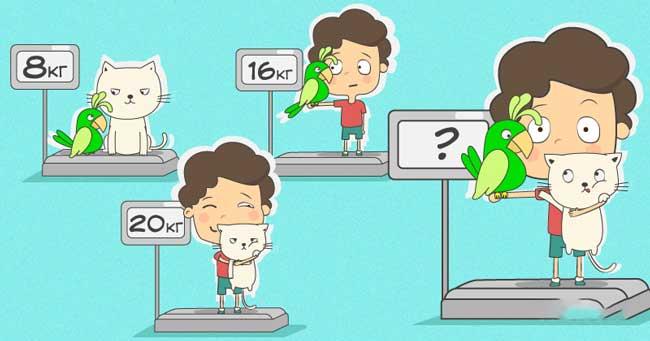 Добри ли сте по математика? Опитайте се да познаете теглото на момчето, котката и папагала
