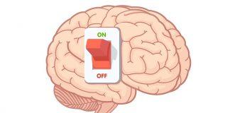 Храните които оказват ефект върху мозъка