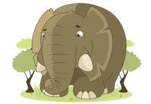 виц слон