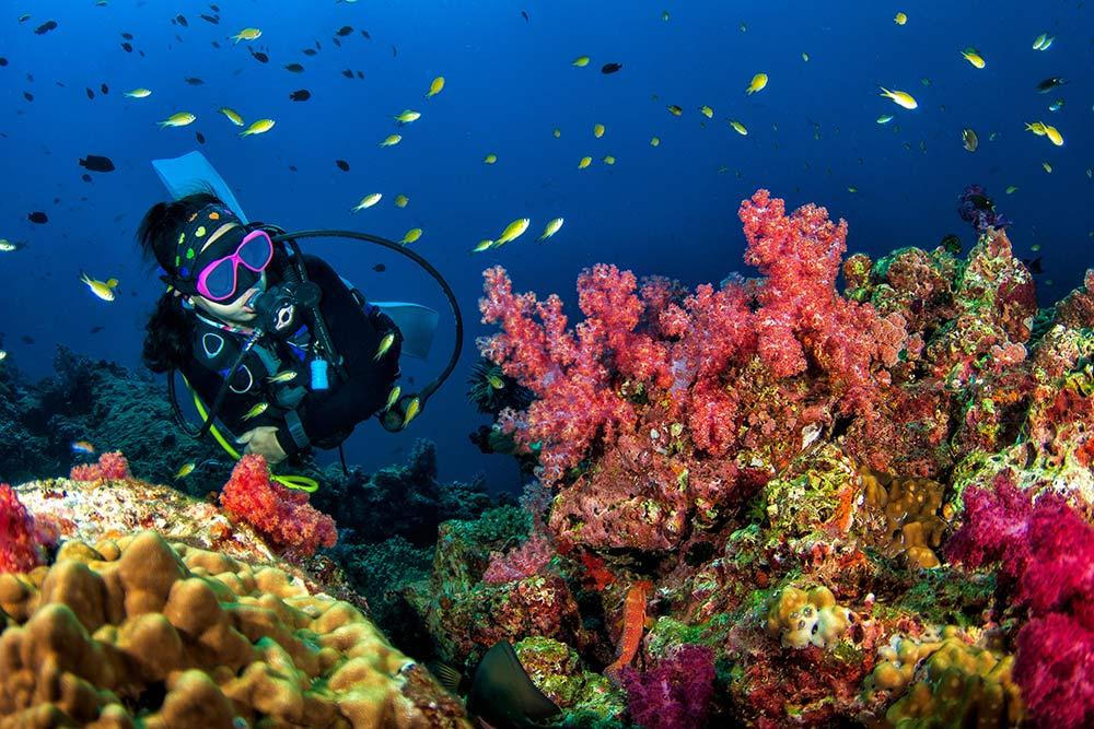 Защо е забранено нощното къпане в Червено море?
