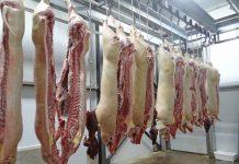 замразено свинско
