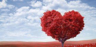 истинската любов
