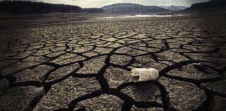 Зимата на нашето недоволствоэ