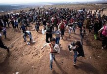 голяма група мигранти