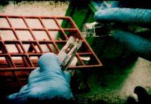 нови случаяна коронавирусна инфекция бубонна чума в Китай 6 нови болни новите случаи на коронавирус
