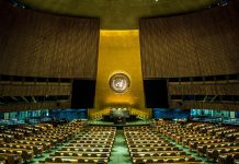 ООН COVID-19