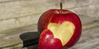 функционирането на сърцето