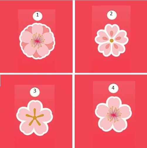 Тест за 1 минута! Избери си цвете и научете какво ще ви се случи през юли