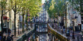 Нидерландия България